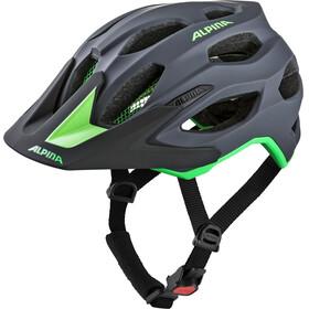 Alpina Carapax 2.0 Bike Helmet grey/green
